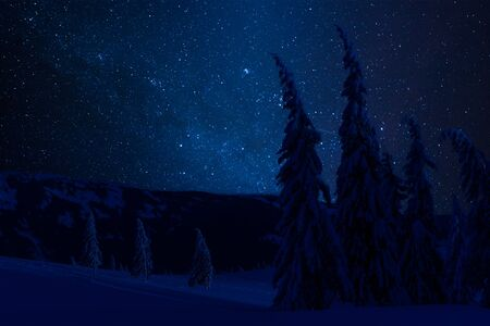 Night winter forest with snowy trees in mountains, landscape with white snow and stars in sky Фото со стока