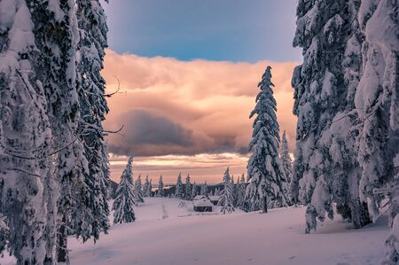Fairy tale winter landscape with small old house in forest, trees covered by white snow Фото со стока