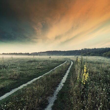 Beautiful early morninig on meadow with flowers and road, majestic sky on sunrisse, summer landscape. Vintave stylization, retro film filter