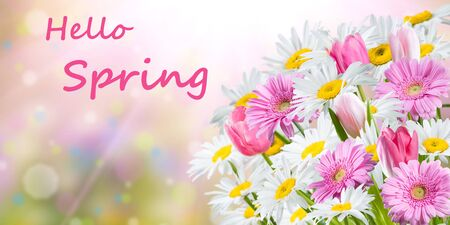 Colorful spring background with fragrant flowers and hello spring lettering Stock fotó