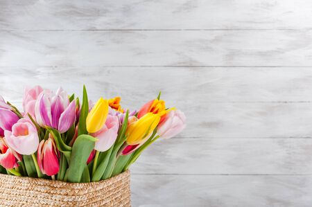 Spring nature background with tulip flowers. Holiday and seasonal design, copy space