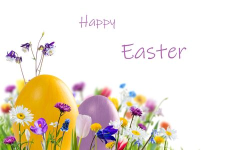 Easter colorful eggs and wild flowers isolated on white, holiday background for your decoration. Egg hunt, copy space, Happy Easter lettering