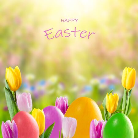 Easter colorful eggs and tulip flowers, holiday background for your decoration. Egg hunt, copy space, Happy Easter lettering