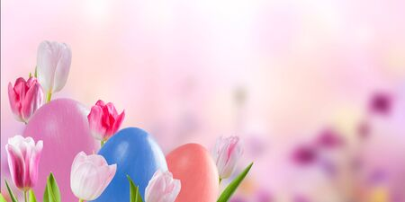 Easter colorful eggs and tulip flowers, holiday background for your decoration. Egg hunt, copy space