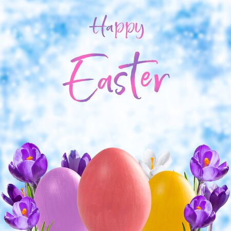 Easter eggs and crocus flowers, holiday background for your decoration. Egg hunt, Happy Easter  lettering