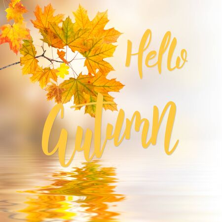 Fall background with foliage reflection in water and hand lettering text Hello Autumn Stock Photo