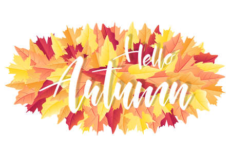 Hello Autumn brush hand lettering text for greeting card or banner on fall leaves. Modern calligraphy slogan, vector EPS 10 Foto de archivo