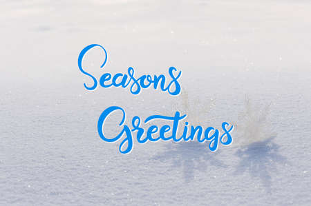 Holiday card with hand lettering text Seasons Greetings for Christmas and New Year design Фото со стока