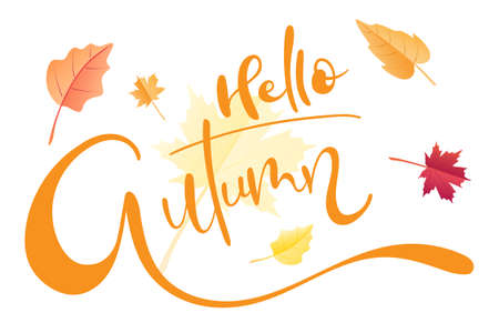 Hello Autumn brush hand lettering text isolated for greeting card or banner with fall leaves. Modern calligraphy slogan, vector EPS 10 Иллюстрация