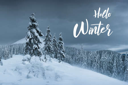 Winter evening in mountains, all trees covered with white snow, Christmas landscape and hand lettering text Фото со стока