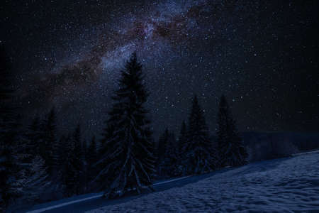 Winter landscape with snowy forest and many stars in night sky