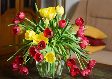 Tulips on a Table in a Living Room Stock Photo - 10029548