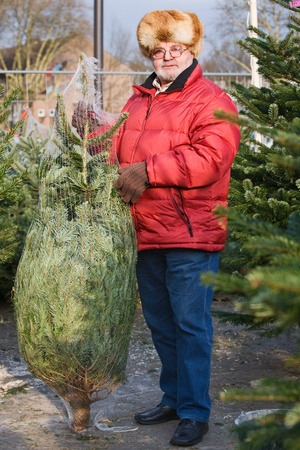 Senior Man shopping for a Christmas Tree Stock Photo - 10103687