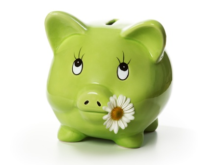 Green piggy bank with daisy flower in mouth photo