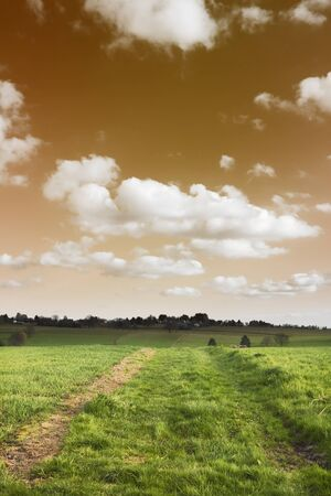 Dirt road passing through a farmland, Germany Stock Photo - 10323392