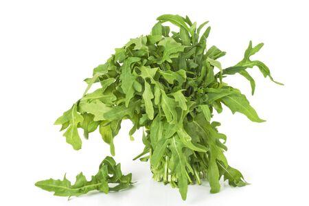 新鮮なタンポポ緑白で 写真素材