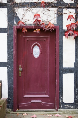 Old wooden door with viewing window covered with autumn leaves photo