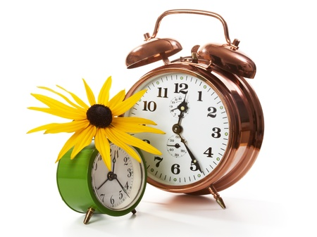 Two alarm clocks with sunflower on white photo