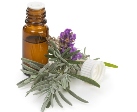 aromatherapy oil: Fresh lavender and bottle of lavender oil on white Stock Photo