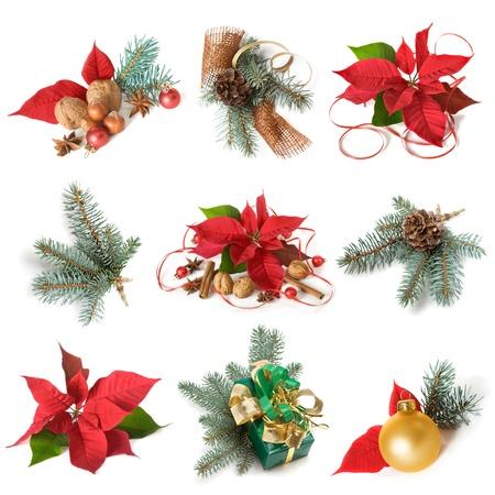 ポインセチアと白い背景の上のコレクションの青いトウヒのクリスマスの装飾