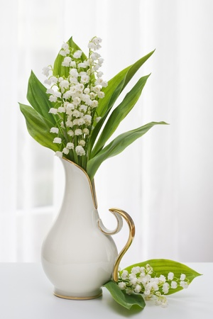 Lilly of the Valley in vaas met raam licht Stockfoto