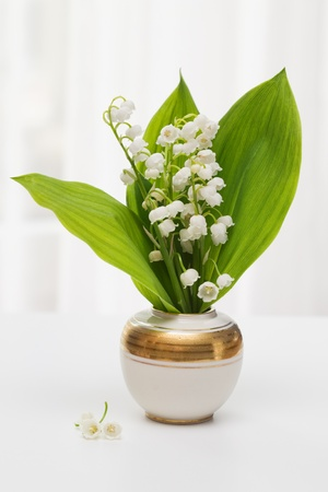 porcelain flower: Lilly of the Valley in vase with window light