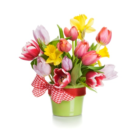 Green flower pot with spring flowers on white background