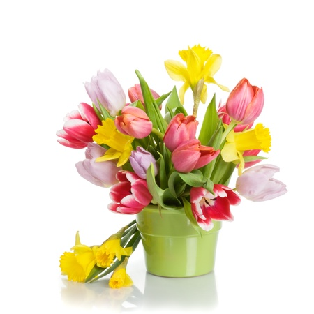 Flower pot with tulips and daffodils on white background Stock Photo