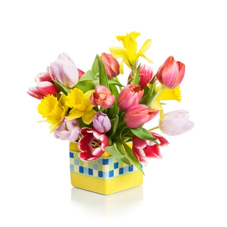 Yellow flower pot with tulips and daffodils on white background yellow flower pot with tulips and daffodils on white background stock photo picture and royalty free image image 12841306 mightylinksfo