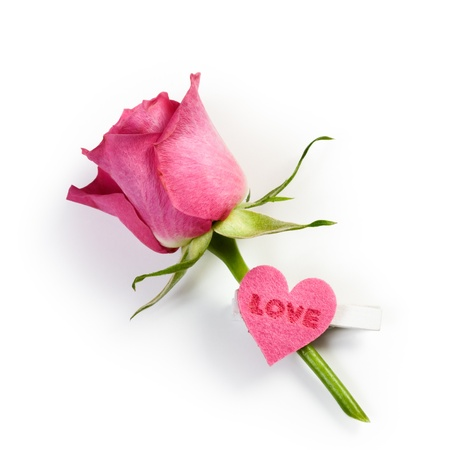 Pink rose and peg decorated with heart on white background photo