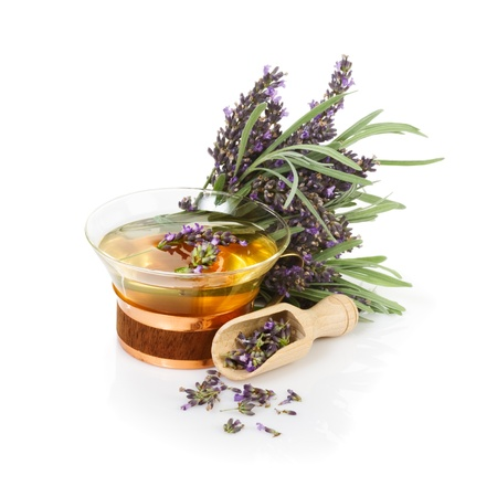 Lavender tea and bunch of fresh lavender on white background photo
