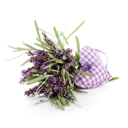 lavanda: Las flores frescas de lavanda y el coraz�n de tela en el fondo blanco