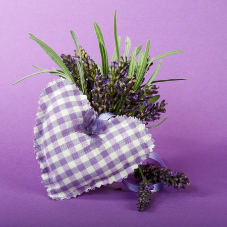 Fresh lavender flowers and fabric heart on purple background photo
