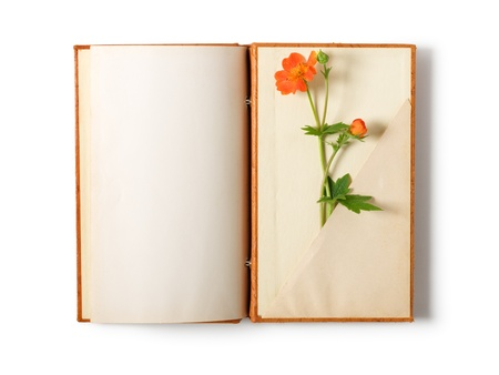 Old notebook open isolated on white background with summer flowers  photo