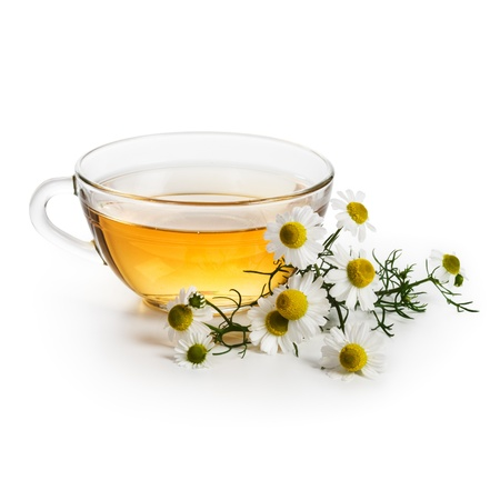 chamomile tea: Herbal tea with fresh chamomile flowers on white background Stock Photo