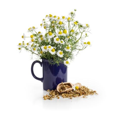 flores secas: Taza azul de flores de manzanilla frescas y una cuchara de brotes secos sobre fondo blanco