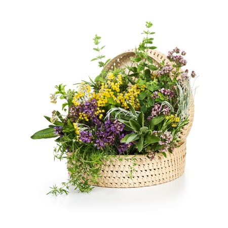 Basket of blooming herbs on white background photo