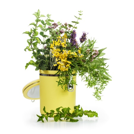 Storage container of blooming herbs on white background photo