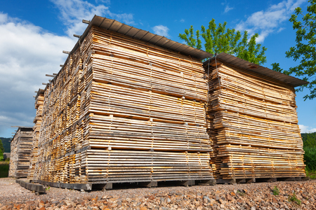 lumber industry: Stacks of wooden boards at the lumber yard
