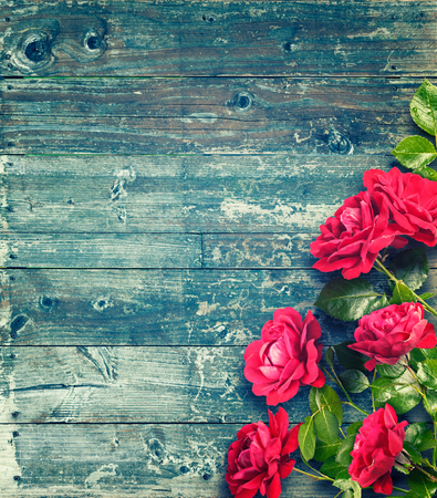Pink roses on rustic blue wooden table. Romantic floral frame background. Valentines day concept