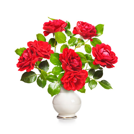 roses in vase: Romantic red roses bouquet in retro vase isolated on white background. Valentine theme