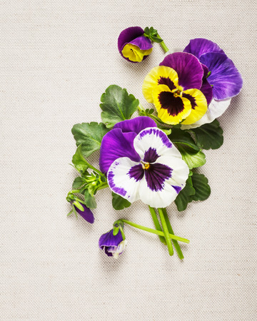 linen fabric: Flower arrangement on linen fabric background