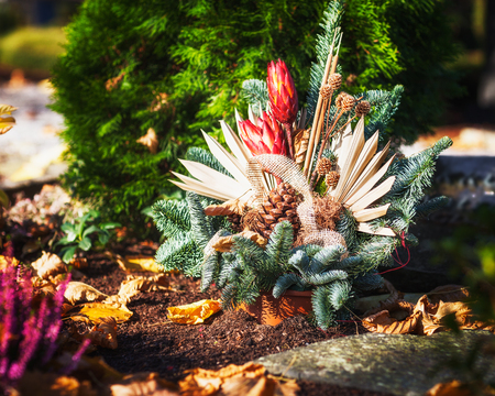 grave: Autumn flowers at cemetery in Germany. Grave with beautiful spruce arrangement