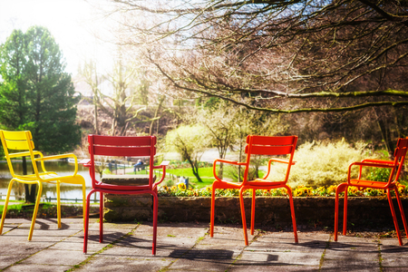 yellow flower tree: Colorful chairs in early spring park. Stock Photo