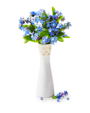 forget me not: Romantic bouquet of forget me not flowers in retro vase isolated on white background clipping path included. Holiday present and mothers day concept Stock Photo