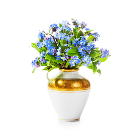 Romantic bouquet of forget me not flowers in retro vase isolated on white background clipping path included. Holiday present and mothers day concept Stock Photo