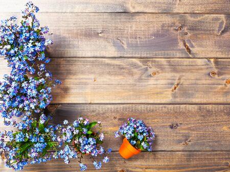 fiori di campo: Fiore su fondo in legno. Mazzo di piccolo azzurro lo dimentica non fiori con vaso di fiori. Primavera. Copia spazio. Vista dall'alto, distesi