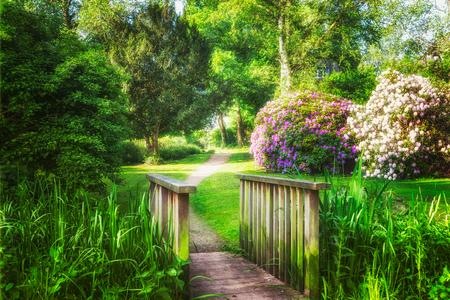 Spring Green park. Stadspark met groene gras, vijver, brug, bomen en bloeiende rododendron. Springtime landschap achtergrond. Schoonheid in de natuur Stockfoto