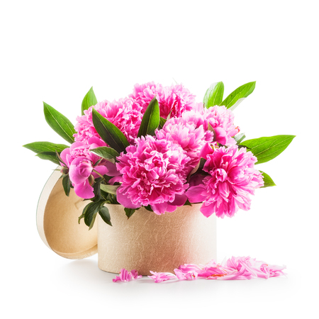 bunch of flowers: Peony flowers. Romantic bouquet of pink peonies in gift box isolated on white background