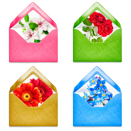 floral objects: Envelope with rose, gerbera, clematis, forget me not flowers collection. Objects group isolated on white background. Floral design elements Stock Photo